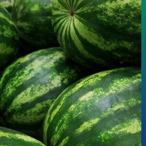 Advantages of Watermelon, especially in a Hot Summer