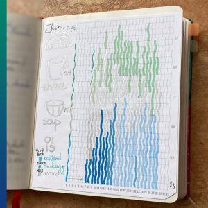 Water diary