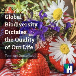 Global Biodiversity Dictates the Quality of Our Life