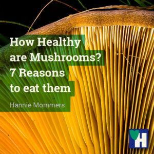 How Healthy are Mushrooms? 7 Reasons to eat them.