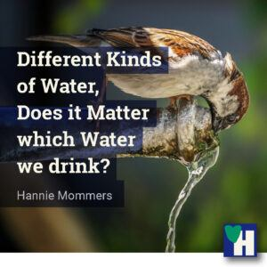Different Kinds of Water, Does it Matter which Water we drink?