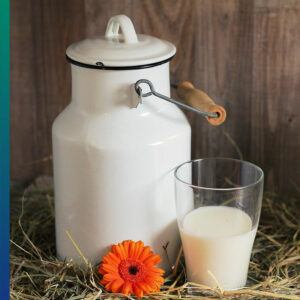 Dairy is tasty and healthy?
