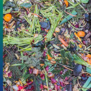 Why reduce food waste?