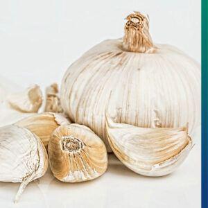 Garlic - healthy and delicious