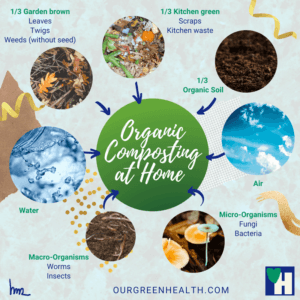 Infographic Composting process