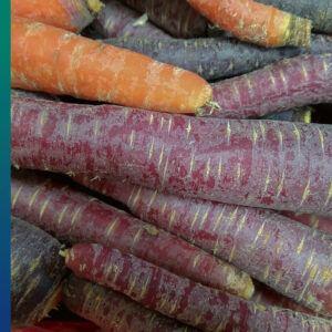 Blue and purple food, original carrots