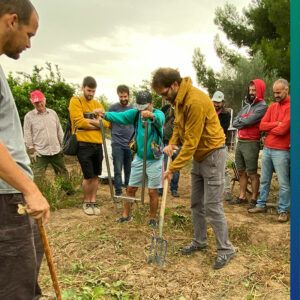 RMDS explanation and demonstration of getting the soil ready