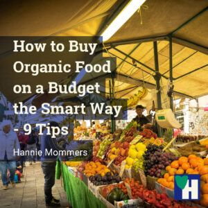 How to Buy Organic Food on a Budget the Smart Way - 9 Tips