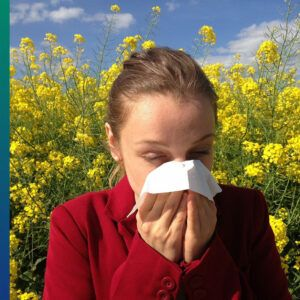 A cold or an allergy