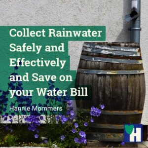 Collect Rainwater Safely and Effectively and Save on your Water Bill