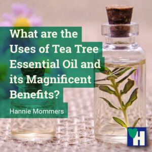 What are the Uses of Tea Tree Essential Oil and its Magnificent Benefits