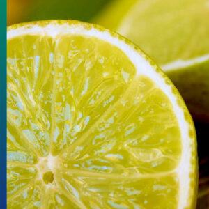 Citrus: lemon