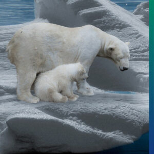 Climate change is not a fairy tale