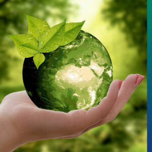 Sustainability at home: refuse, reduce, reuse, recycle and rot.