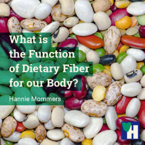 What is the Function of Dietary Fiber for our Body?