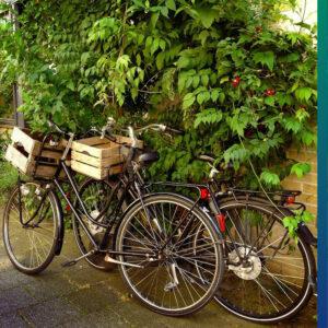 Cargo on the bike