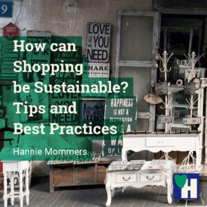 How can Shopping be Sustainable? Tips and Best Practices