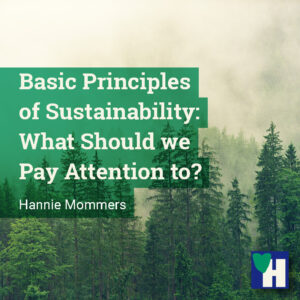 Basic Principles of Sustainability: What Should we Pay Attention to?