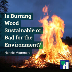Is Burning Wood Sustainable or Bad for the Environment?