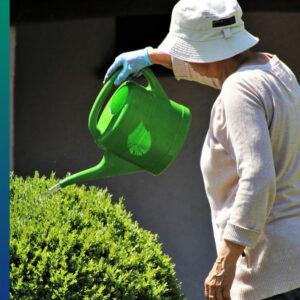 Healthy Lifestyle: quiet work in the garden